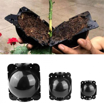 3 pcs Plant Root High Pressure Box Grafting Rooting Growing Device Propagation Ball - M