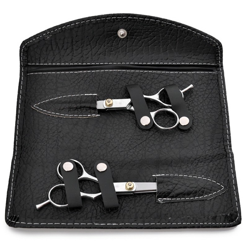 Professional Hair Cutting Thinning Scissors Shears Hairdressing Set with Case