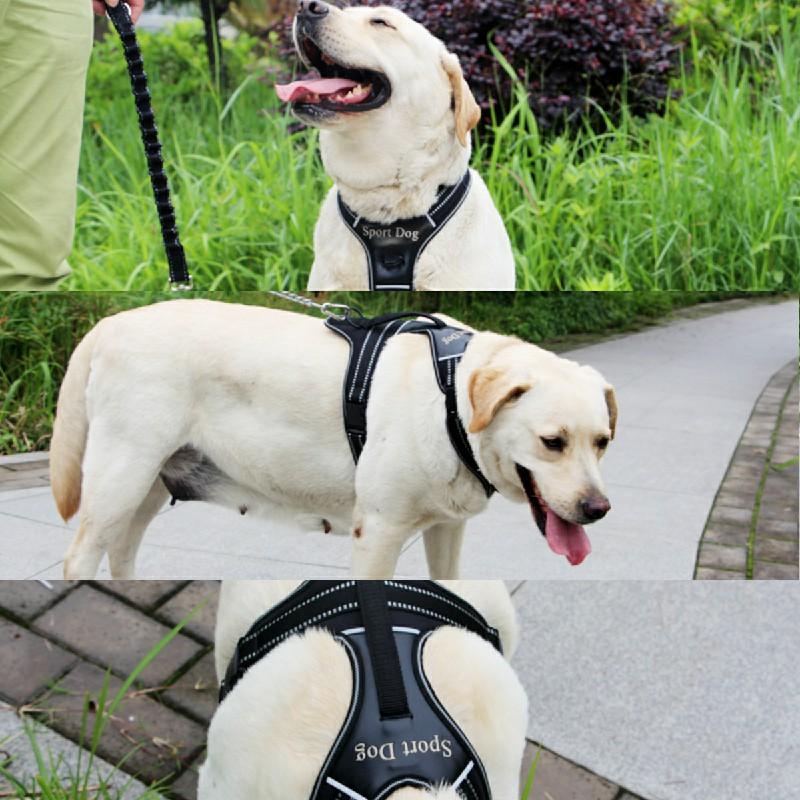 Pet Control Harness for Dog Easy Soft Walking Collar Vest Size M - Orange